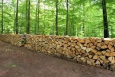 Commune : Vente de 7 lots de bois