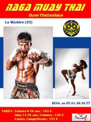 Stage de Muay Thai