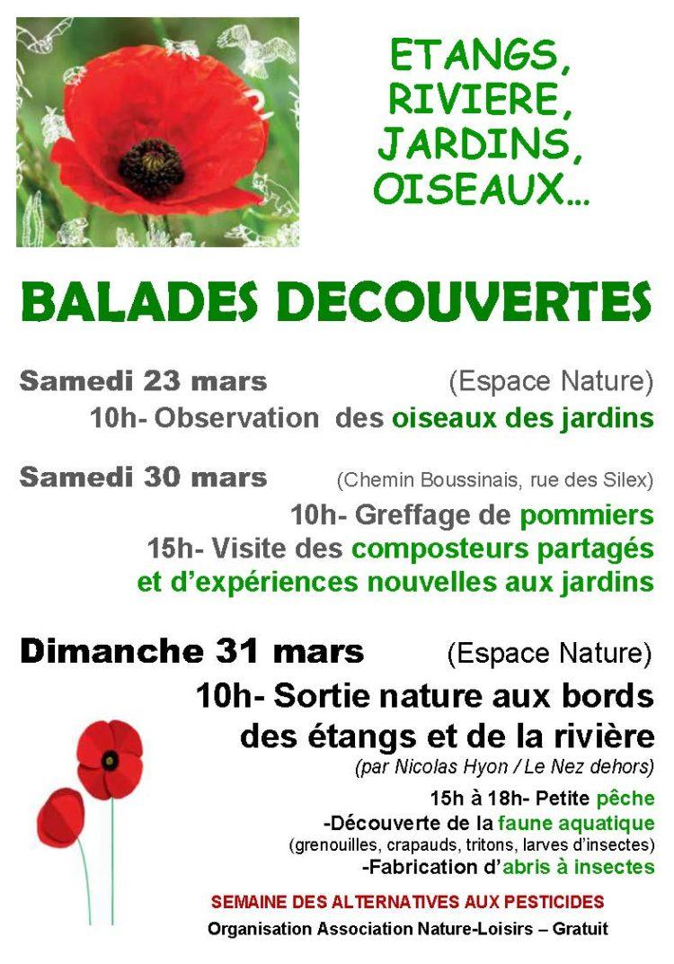 Balades découvertes – Association Nature-Loisirs